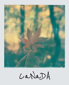 CaNaDA |Shop The World